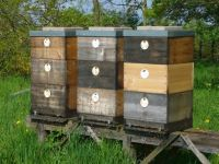 ilustrační obrázek - úly